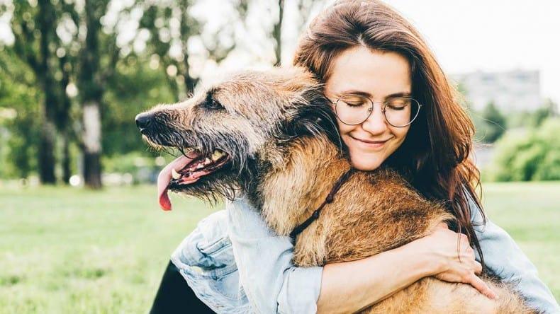 Come rimuove il pelo del cane da vestiti, abiti, divani e poltrone