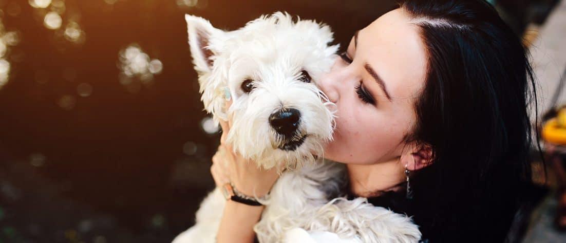 benefici cane