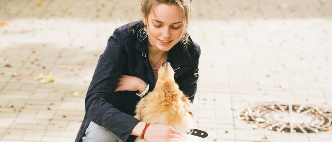 polizza assicurativa cane